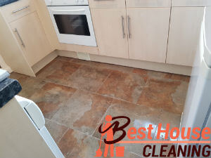 professional cleaning services 1
