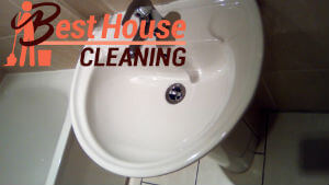 professional cleaning services 4